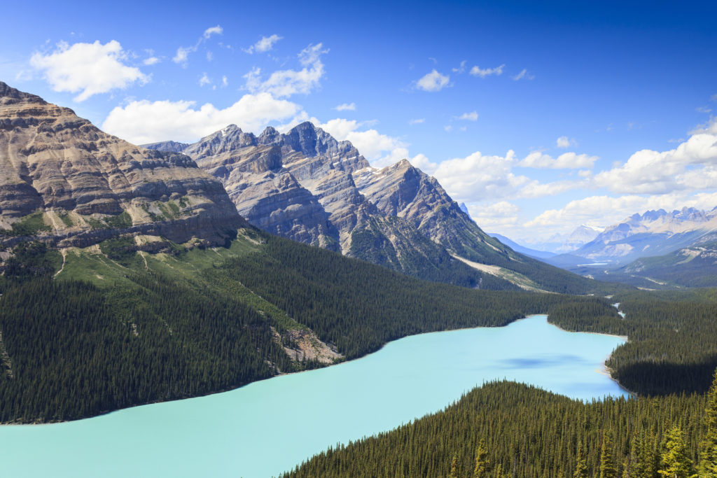 Peyto Lake in Jasper National Park, Alberta, Canada