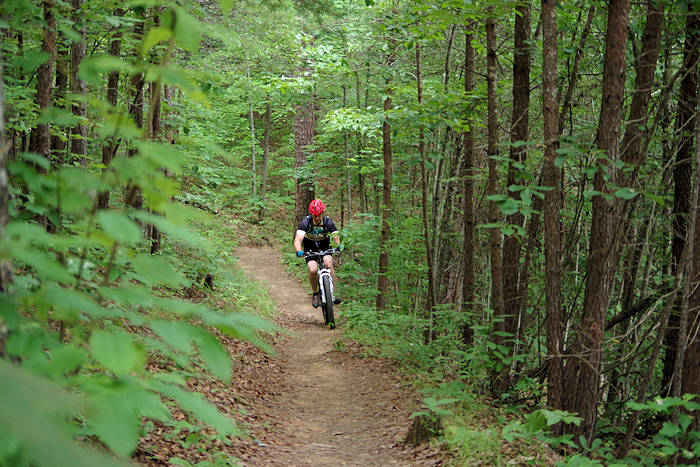 Mountain biking Bent Creek in the DuPont Forest NC