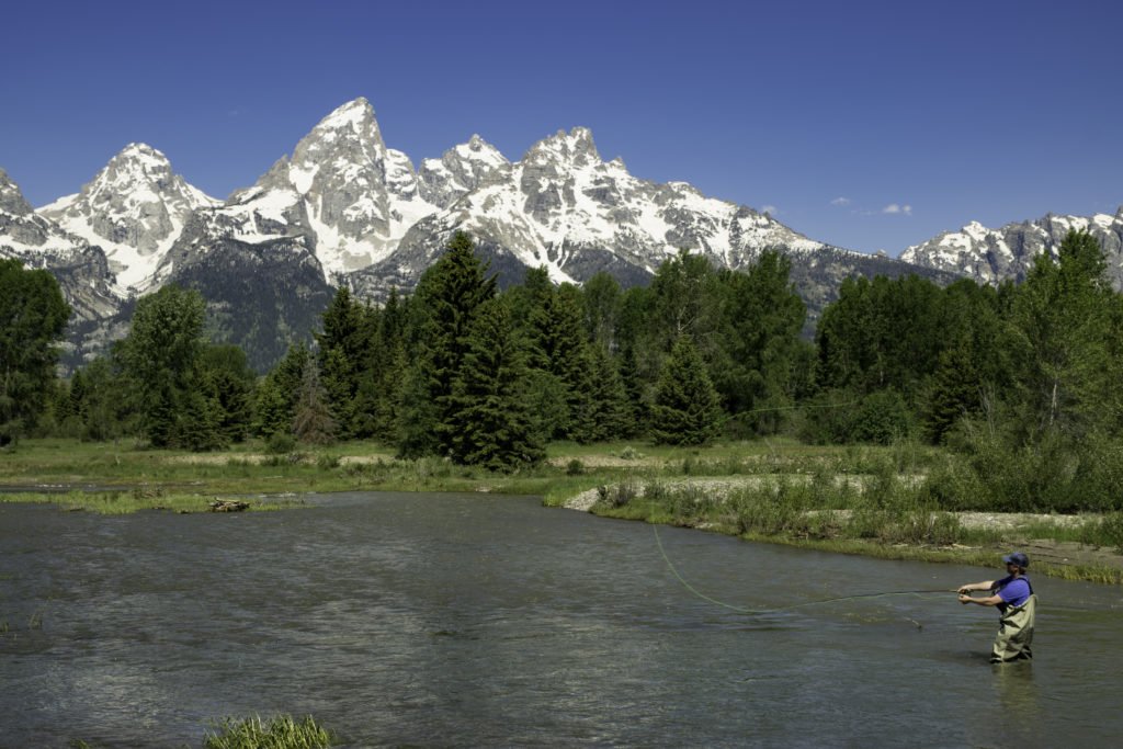 Fly fishing at Schwabacher's Landing, Grand Teton National Park, Wyoming