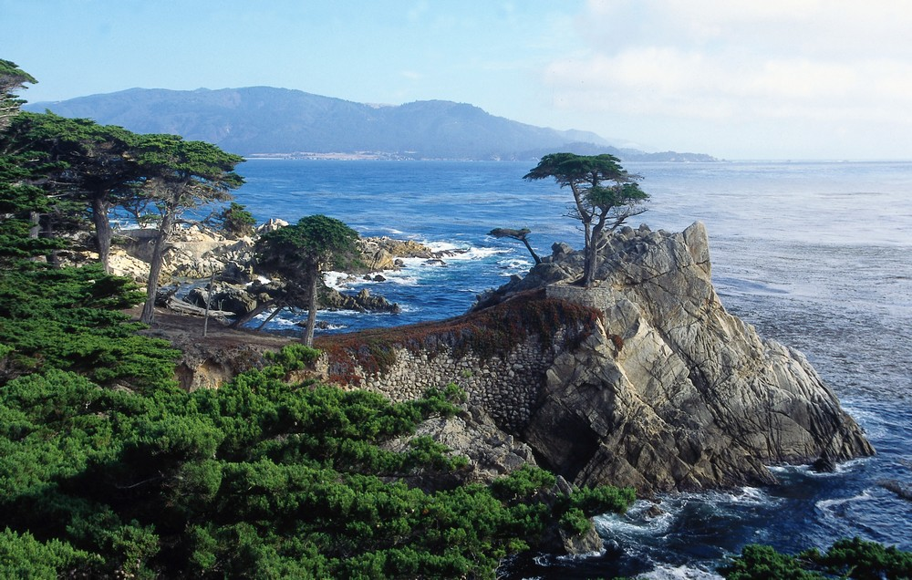 The Lone Cypress along the 17 Mile Drive, Monterey, California