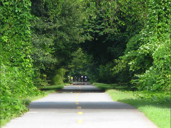 Riding bikes long Silver Comet trail in Atlanta, GA