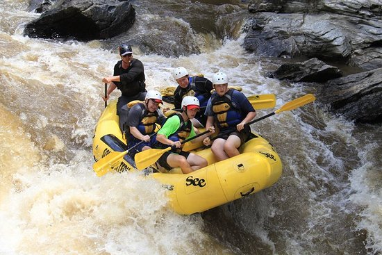 Rafting down the Chattooga River with Southeastern Expeditions