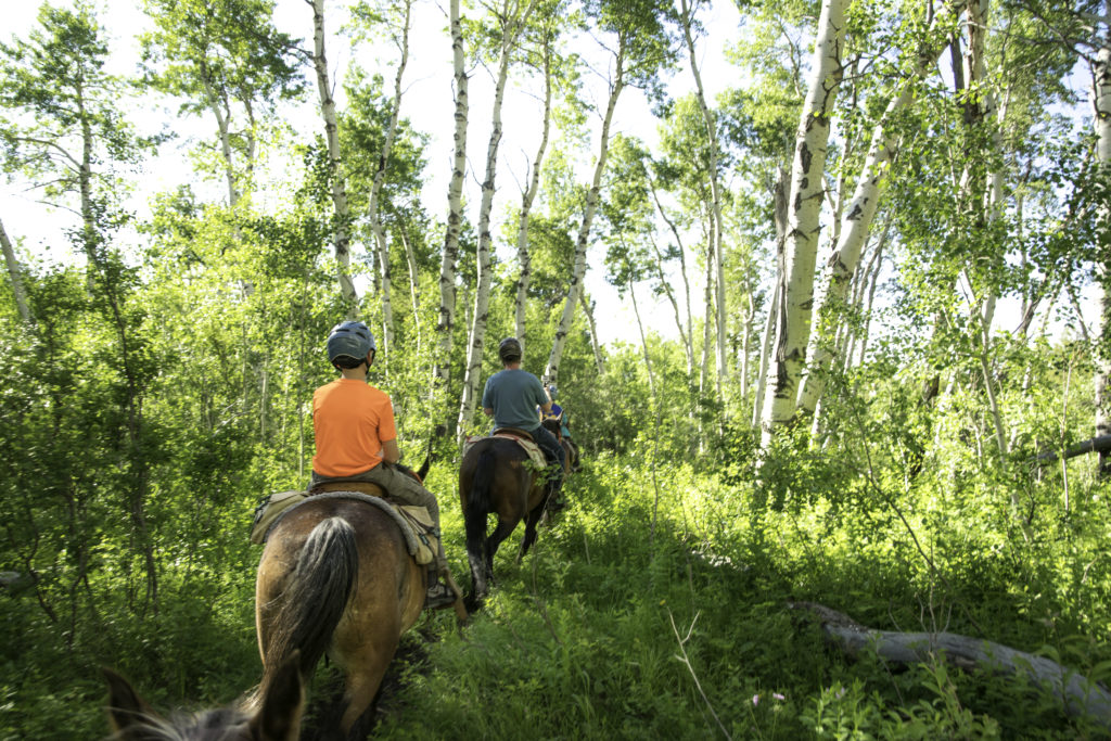 Horseback riding in Teton Valley, Idaho