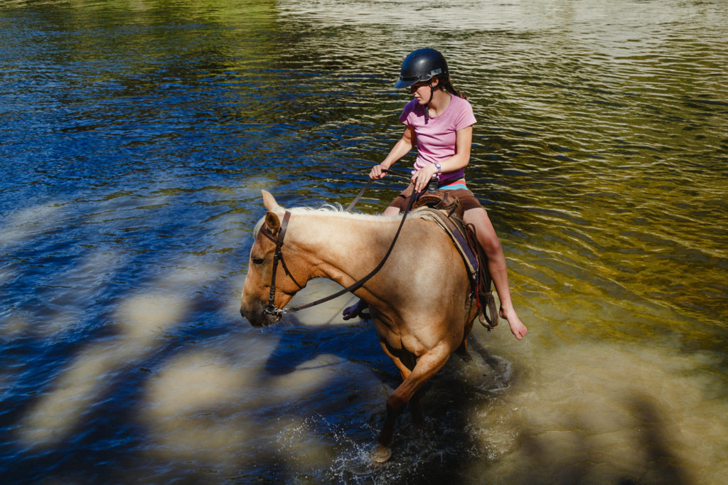 Riding horses on the farm at Milk and Honey Cottage New Zealand